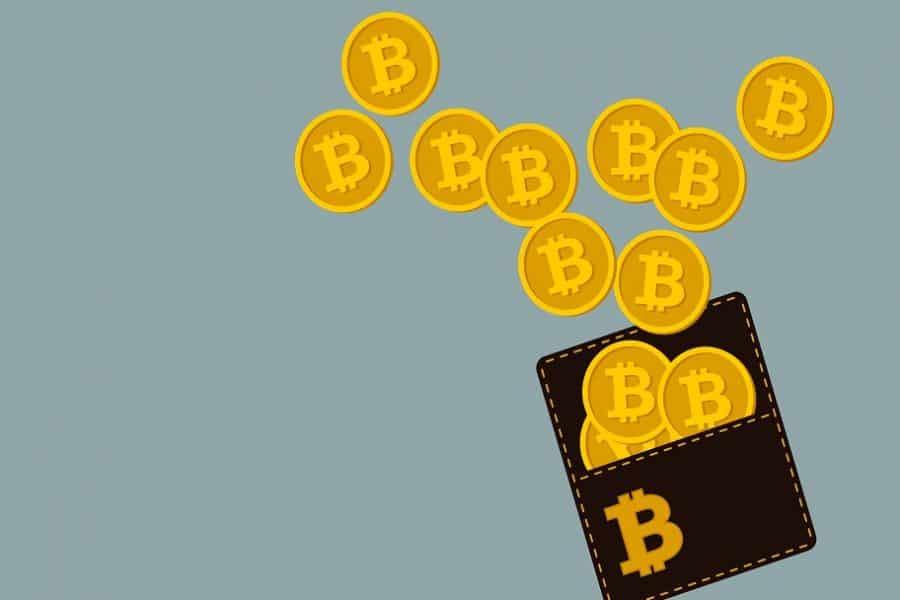 Ako fungujú kryptopeňaženky?