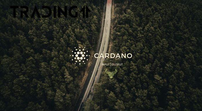 03.05.21 Cardano dále expanduje do Afriky